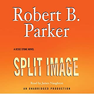 Split Image audiobook cover art
