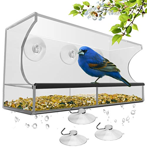 Best bird feeder station with feeder for 2020