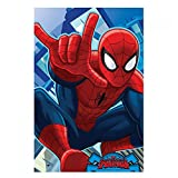 Marvel Spider-Man - Ultimate Coral Fleece-Decke