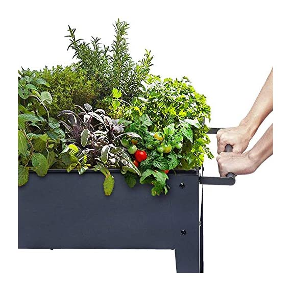 """FOYUEE Raised Planter Box with Legs Outdoor Elevated Garden Bed On Wheels for Vegetables Flower Herb Patio 2 SIZE: 40-1/2"""" L x 15-1/2"""" W x 31-1/2"""" H overall, planting box: 37-1/2"""" L x 15-1/2"""" W x 8"""" deep, holds about 2.5 cubic feet soil, provide ample growing space to raise vegetables, herbs, flowers and plants ERGONOMIC: Elevated raised planter box with legs eliminates the need to bend over, making gardening convenient. Raised garden bed on wheels, move to anywhere you want, with handy shelf holds accessories or tools METAL: Made of stable galvanized steel raised garden bed with anti-rusty grey coating, not made of wood which may rot. It can place outside or indoor for long time use"""