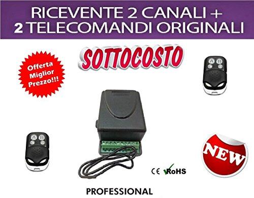 Set met 2-kanaals ontvanger 5 A + 2 afstandsbedieningen 433 MHz voor poorten, rolluiken, verlichting