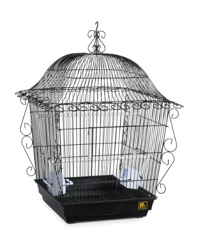 Prevue Pet Products Jumbo Scrollwork Bird...