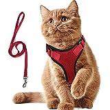 AEITPET Arnes Gato, Arnes para Gatos, Correa arnés arnes Gato pequeño Cuerda Chaleco Ajustable Respirante Arnés para Gatos y Correa Chaleco Suave y Transpirable para Mascotas pequeñas (XS, Rojo)