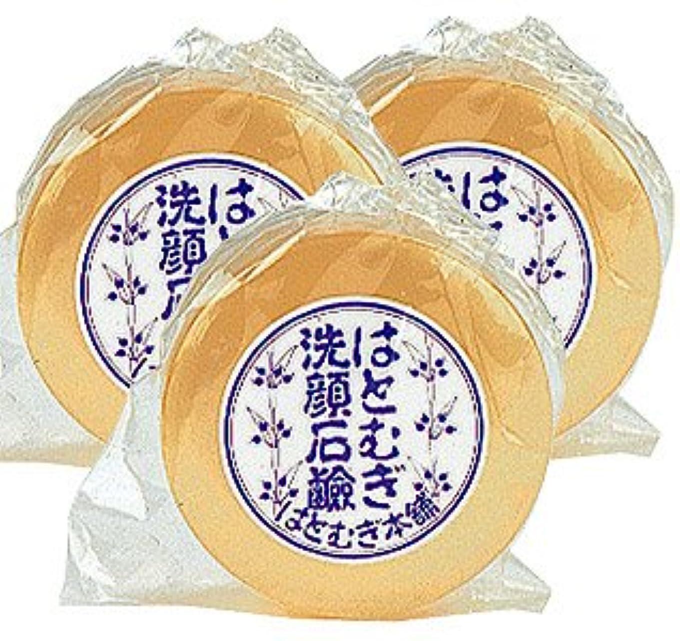 豪華なスリルスリルはとむぎ洗顔石鹸 100g【3本セット】皇漢薬品研究所