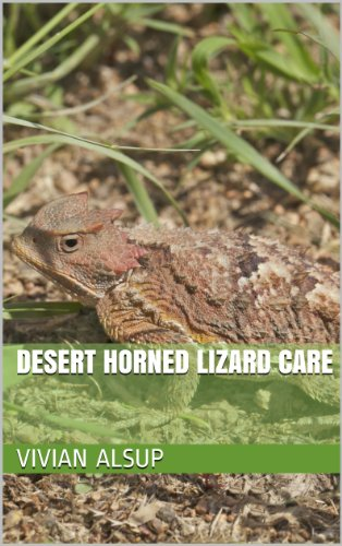 Desert Horned Lizard Care (English Edition)