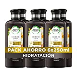 Herbal Essences bio:renew Leche De Coco Hidratación Champú, En Colaboración Con El Real Jardín Botánico De Kew 6x 250ml