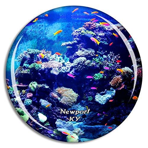 Weekino Newport Aquarium Kentucky USA Kühlschrankmagnet 3D Kristallglas Touristische Stadtreise City Souvenir Collection Geschenk Starker Kühlschrank Aufkleber