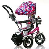 QXMEI Triciclo Infantil Carrito De Bebé Carrito 1-3-6 Triciclo Infantil De Tres Ruedas con Toldo,Multi-Colored
