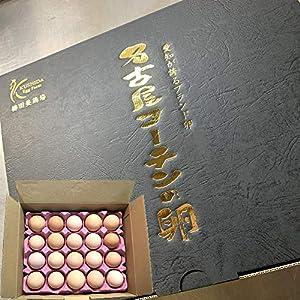 【化粧箱】愛知が誇るブランド卵☆名古屋コーチンの卵【20個入り(18個入り+2個破卵保障)】卵独特の臭みが無い優しい味わいをした高級卵(送料無料)(養鶏場直送)どんな卵料理もワンランクアップ!!