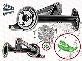 axlett® Filtro aspiracion bomba aceite para PSA CITROEN PEUGEOT Motore 1.4, 1.6 HDi 107 206 + 207 307 308 407 508 1007 3008 5008 Partner C3 C4 C2 C5   1.4 1.5 1.6 TDCi   équivalent 101866
