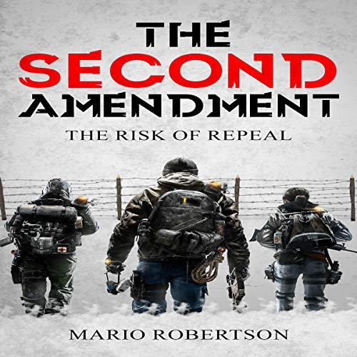 The Second Ammendment cover art