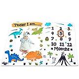 WERNNSAI Dinosaurier Baby Monatliche Meilenstein Decke - Weiche Flanell Kinderzimmer Bett Decken fr Jungen Neugeborenen Baby Shower Geschenk Decken, Fotografie Hintergrund Wohndecke mit...
