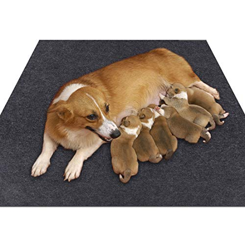 Sszhen Whelping Box Liner Mat,Washable and Reusable Puppy Pad,Premium Absorbent Urine pet Mat,Under The Dog Crate Mat,Protect Your Floor, Furniture or Any Other Area from Liquid Leakage (36