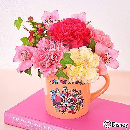 日比谷花壇 母の日 ディズニー アレンジメント「ミッキー&フレンズ」
