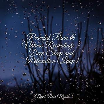 Peaceful Rain & Nature Recordings - Deep Sleep and Relaxation (Loop)
