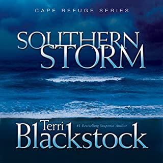 Southern Storm audiobook cover art
