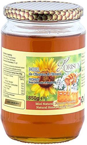 Miel de Abeja Pura y Natural de Cilantro y Girasol 850 Gramos Formato Familiar, Tarro 1 kilogramo De Cristal