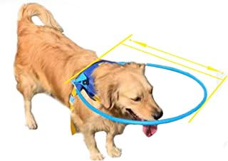 Tutuba Halo Harness for Blind Dog, Safe Blind Dog Harness Guide Device,Protective Vest Ring for Dogs-Prevent Accidents & Build Confidence