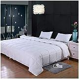 GrayEagle Bedding Co. All Season Down Alternative Comforter (Super King - 120' x 98' - 116 oz Fill)