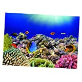 VANKOA Aquarium Hintergrund Aufkleber Seascap Korallenriff Aquarium Hintergrund Plakat - 61 x 41 cm