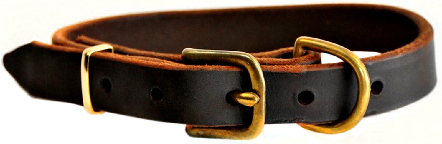 Dean and Tyler B and B , Basic Leather Dog Collar With Solid Brass Hardware  Brown  Size 12Inch by 1Inch  Fits Neck 10Inch to 14Inch