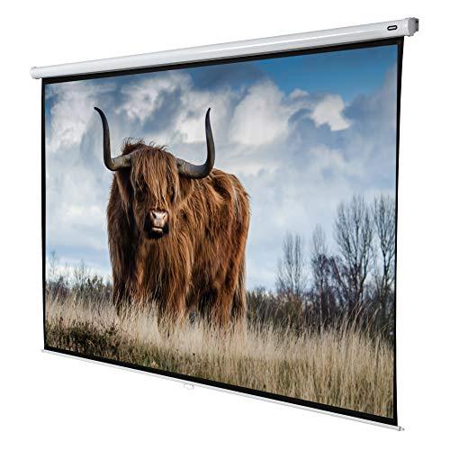 celexon manuell ausziehbare Heimkino- und Business-Beamer-Leinwand 4K und Full-HD Rollo-Leinwand Economy - 280 x 210 cm - 4:3 - Gain 1,0