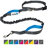 Tuff Mutt - Hands Free Dog Leash for Running, Walking, Hiking, Durable Dual-Handle Bungee Leash, Reflective Stitching, 4-Foot Long, Adjustable Waist Belt (Fits up to 42' Waist)