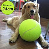 yunli Rubber Kelly Big Giant Pet Dog Puppy Mega Jumbo Tennis Ball Thrower Chucker Launcher Play Toy Signature Diameter 24cm