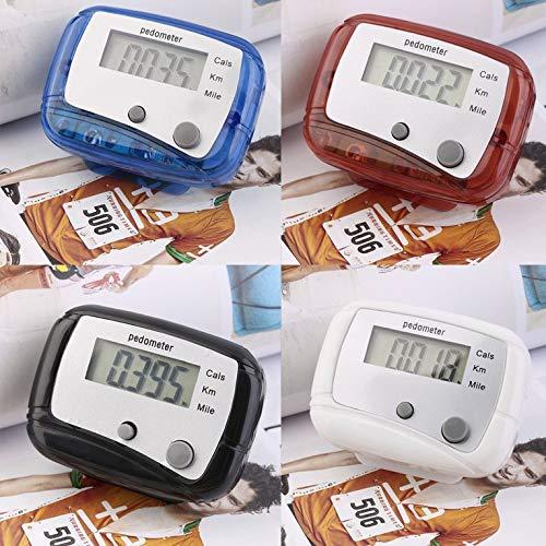 Goldyqin Leichte Mini-Digital-LCD-Schrittzähler-Lauf-Jogging-Schritt-Schrittzähler - Mehrfarben