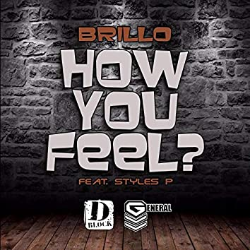 How You Feel (feat. Styles P)