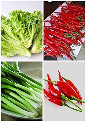 NOUVEAU haute qualité biologique » Germination santé 95% + 6 Groupes Pour Select Graines de légumes 4 en 1 Lot Garden 3