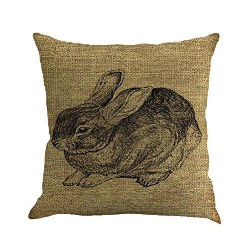 Transwen - Funda de cojín para sofá, diseño de Pascua, c, 45 x 45 cm