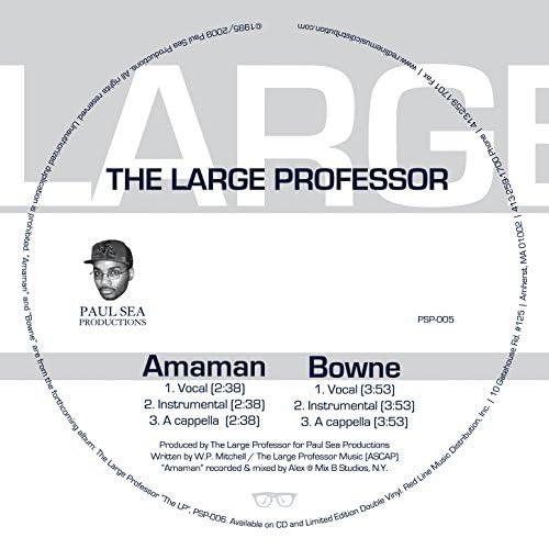 The Large Professor