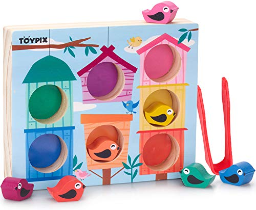 TOYPIX Color Sorting Bird House Toy - Motor Skill Sorting Toy for 3 Year Olds   Montessori Tweezers & Fine Motor Matching Kid Toys   Best Preschool Activities for Learning Colors   + eBook