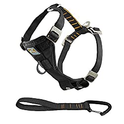 Secure dog harness for vehicle travel, For keeping dogs safe in cars and protecting them against sudden movements, Comfortable and easy to use on short or long journeys Size: Large (23-36 kg/50-80 lbs, neck 46-76 cm, chest 61-86 cm), Suitable for Lab...