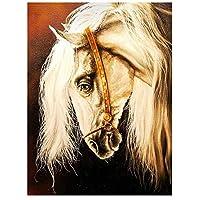 数字 油絵 数字キット diy 数字油絵 塗り絵 大人 子 油絵 絵かき インテリア 壁飾り ホームデコレーション 動物の馬-16インチ x 20インチ ブ(フレームレス)