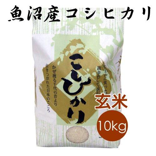 【恵方巻がおいしくできるお米】魚沼産コシヒカリ 玄米 10kg
