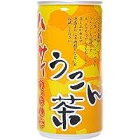 ハイサイ うこん茶 190g×30本 水・飲料 飲料・ソフトドリンク 茶系飲料 [並行輸入品]