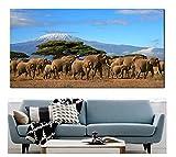DPFRY Elefantenherde Berg Kilimanjaro Kenia Leinwand