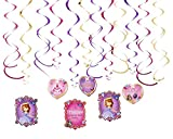 amscan Foil Swirl | Disney Sofia The First Collection | Party Accessory,Multi Color,10' x 9.5'