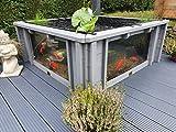 Clear View Garden Aquarium Lotus Square Raised Garden Pond with Windows