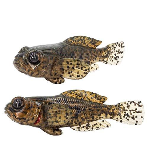 FISHN -   5er Set GOBYone