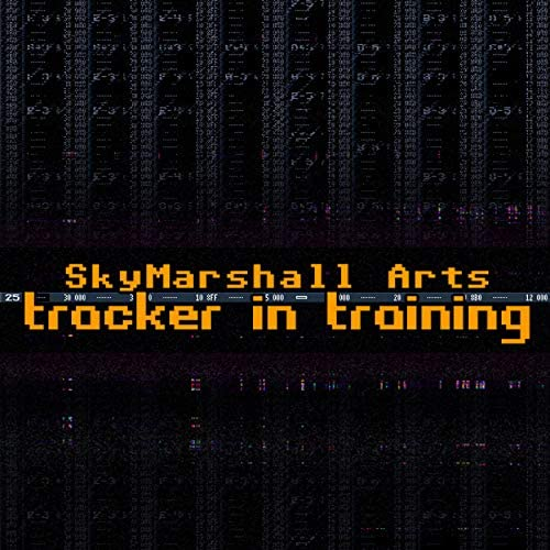 SkyMarshall Arts