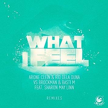 What I Feel (feat. Sharon May Linn) [Remixes]
