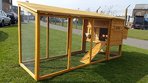 Hühnerstall Hühnerhaus Cocoon Hühnerstall grosser Hühnerstall Hühnerhaus Winter sommer Modell 2 bis 4 Huhner 2.5m lang mit Nistkasten und einem Dach das vollständig geoffnet werden kann – komplett uberdachter Laufstall - 4