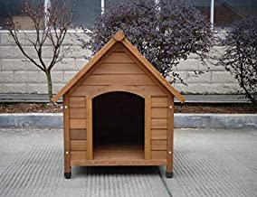 apex dog kennel and run