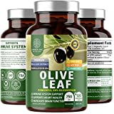 N1N Premium Olive Leaf Extract [Superior Strength with 20% Oleuropein] All Natural Antoxidant Supplement to Strengthen Heart Health and Boost Overall Wellness, 120 Veg Caps