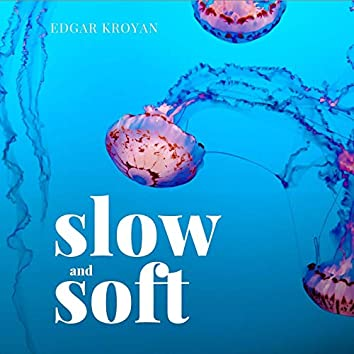 Slow and Soft