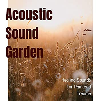 Acoustic Sound Garden - Healing Sounds for Pain and Trauma