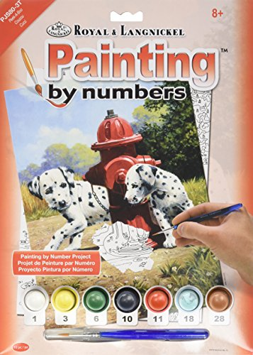 Royal & Langnickel Peek-A-Boo Design Paint by Numbers Kit